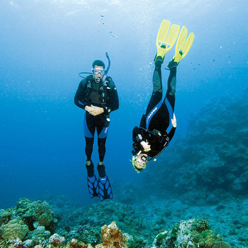 Fun Dives